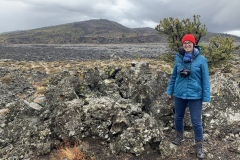 Analise and lava fields