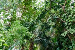 Mark in the greenery