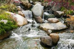 Water, rocks, and plants are essential elements of a Japanese garden.