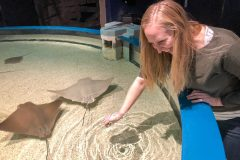 Heather petting the rays
