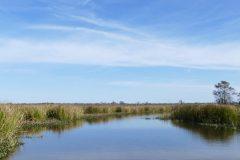 Part prairie, part bog, part river.