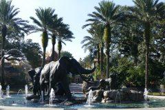 Fountain at the Audubon Zoo